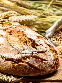 Finex for rye wheat breads